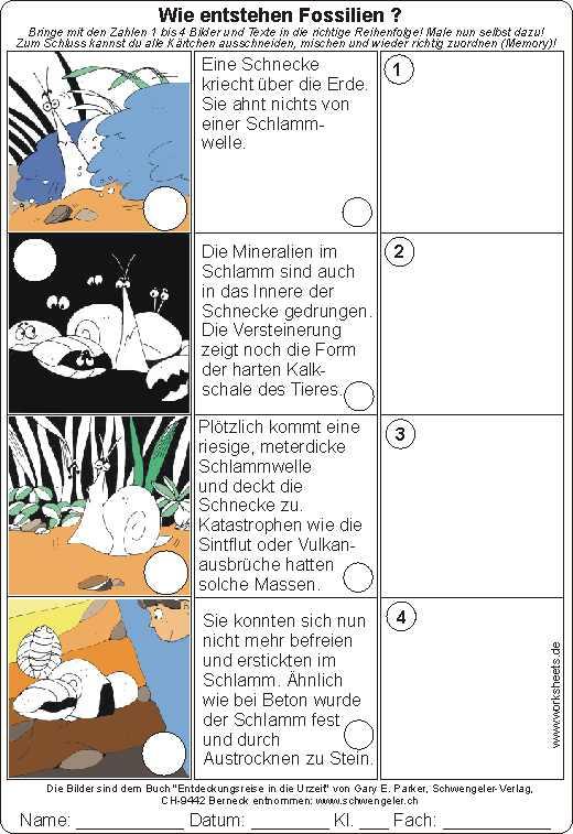 Wie Fossilien entstehen Arbeitsblatt mit Lösung Worksheet with solution