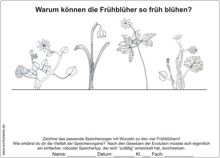 kostenlos deutsch sex Filderstadt