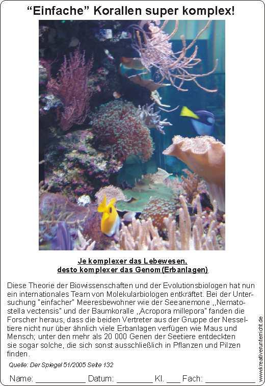 Einfache Korallen - super komplex Genetik