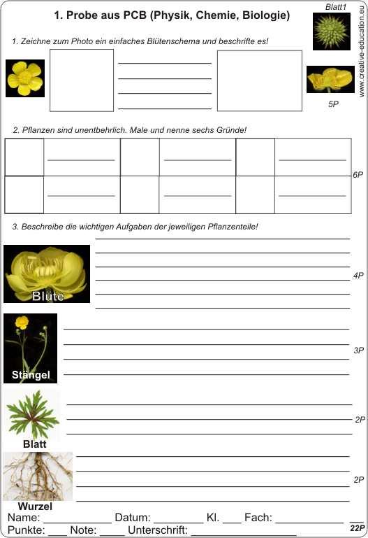 Probe 1 aus der Physik Chemie Biologie Thema Pflanzen und ihre ...